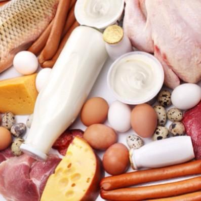 белковая диета доктора